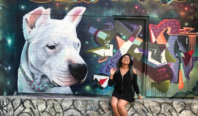 The Graffiti Tour –Toronto